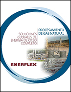 Natural Gas Processing Spanish