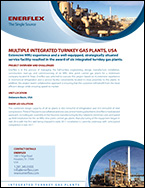 Multiple Integrated Turnkey Gas Plants, USA