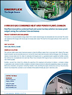 9 MW Bio Gas Combined Heat and Power Plant, Canada